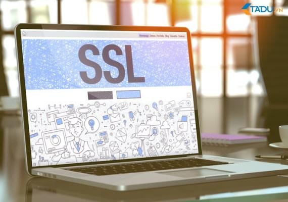 Hướng dẫn xác thực tên miền bằng CNAME khi đăng ký SSL Comodo