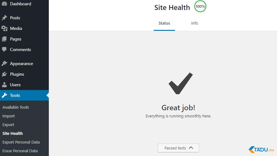 kết quả site health check đạt 100%