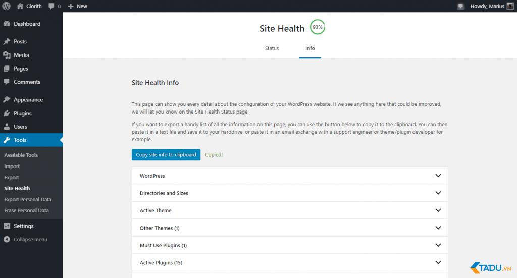 Site Health Check Info trang thông tin