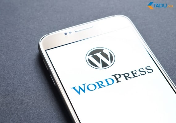 Sử dụng Multi Domain trên WordPress