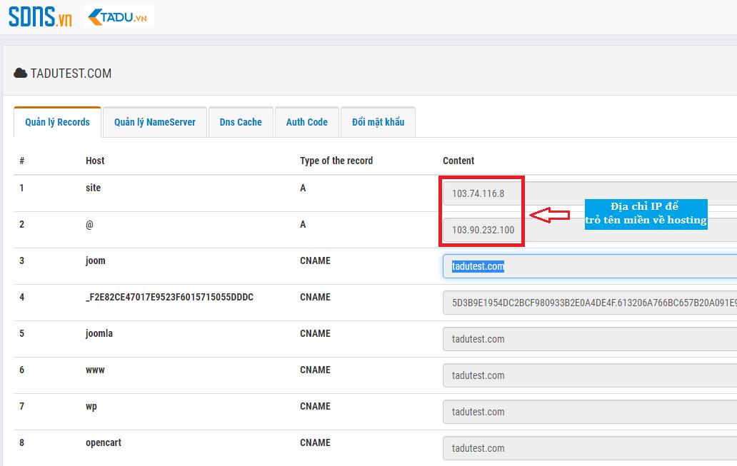 trỏ tên miền về hosting bằng địa chỉ IP