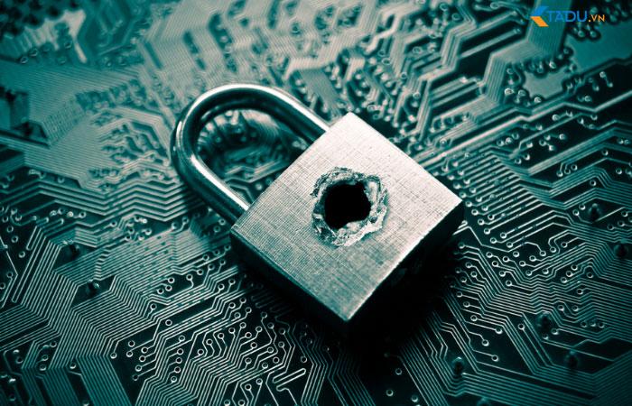 lỗ hổng bảo mật website
